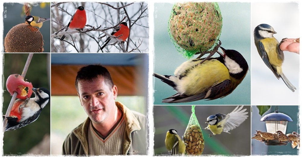 Gondoskodjunk a madarakról