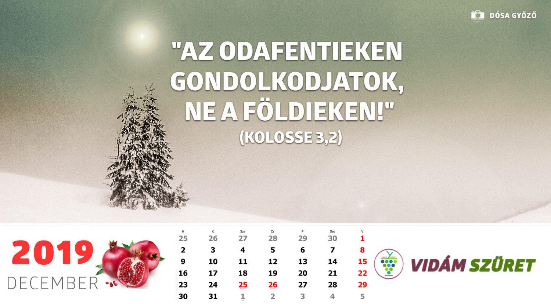 Sikeres, győztes, boldog decembert!