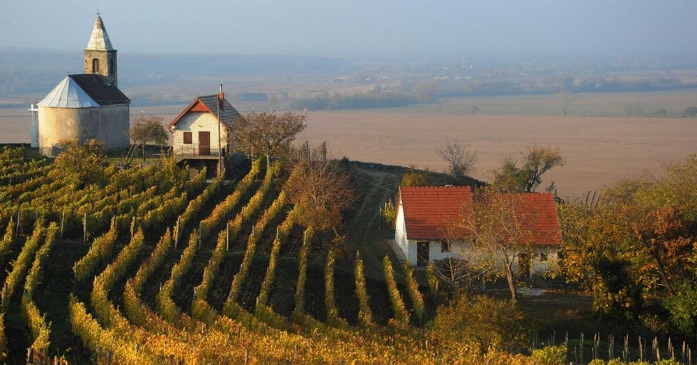 Somló, Magyarország legkisebb borvidéke