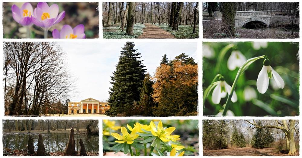 Az Alcsúti Arborétum