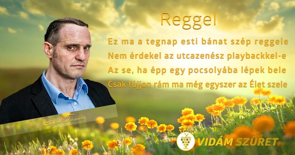 """Fogadjanak szeretettel egy vidám """"négysorost"""" Pajor Tamás várhatóan júniusban megjelenő """"Haladó magyar"""" című kötetéből!"""