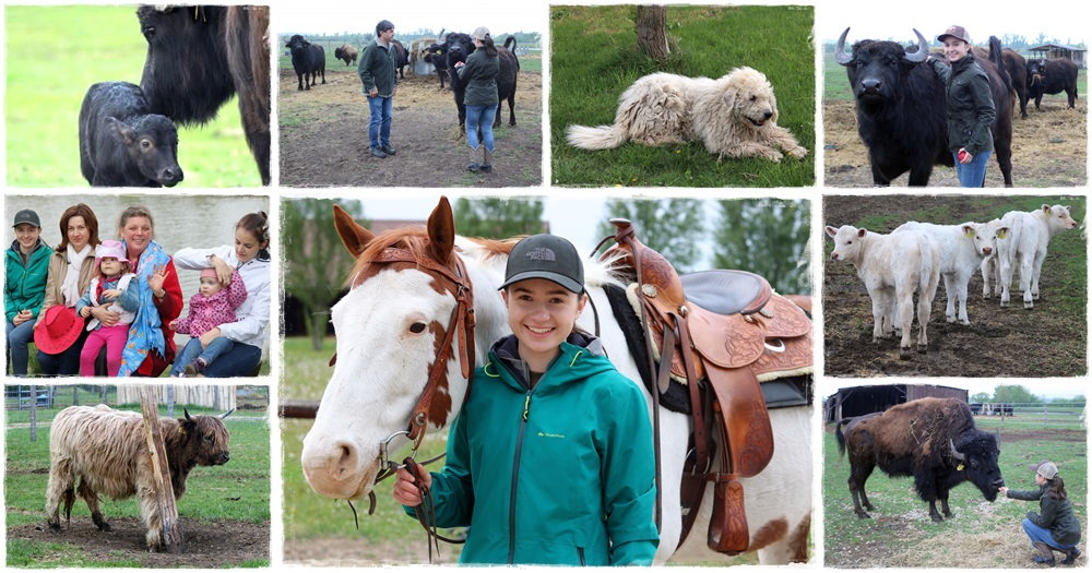 Az állattenyésztéshez szív kell!