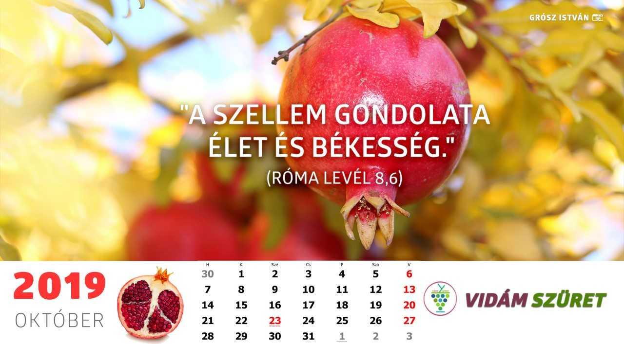 Sikeres, győztes, boldog októbert!