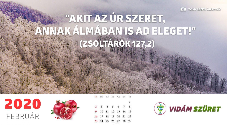 Sikeres, győztes, boldog februárt!