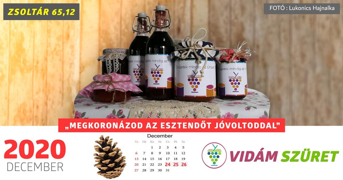 Áldott, sikeres decembert kívánunk minden kedves követőnknek!